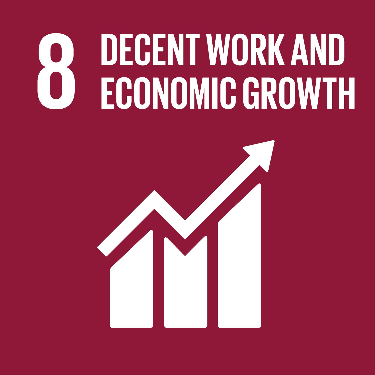 SDG Goal #8 Decent Work