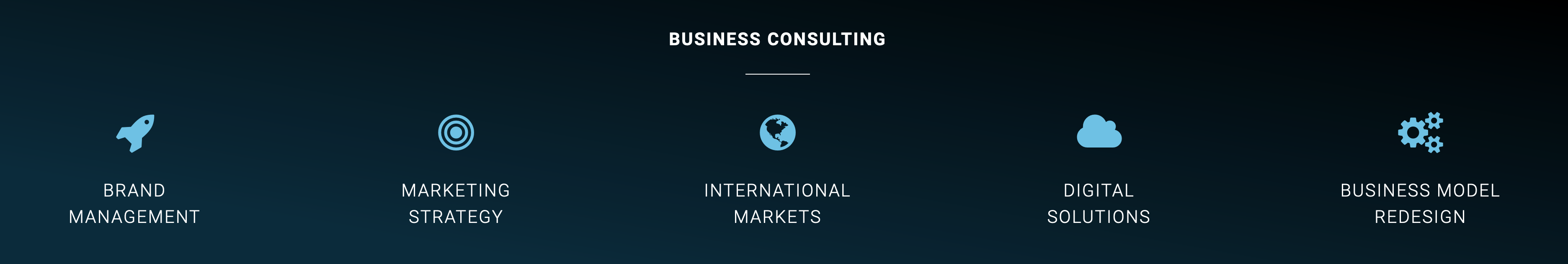 Business Consulting services from Purenessity