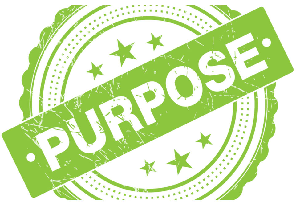 The Rise of Purpose-driven Brands in a VUCA World